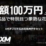 600x315_hanami-jp